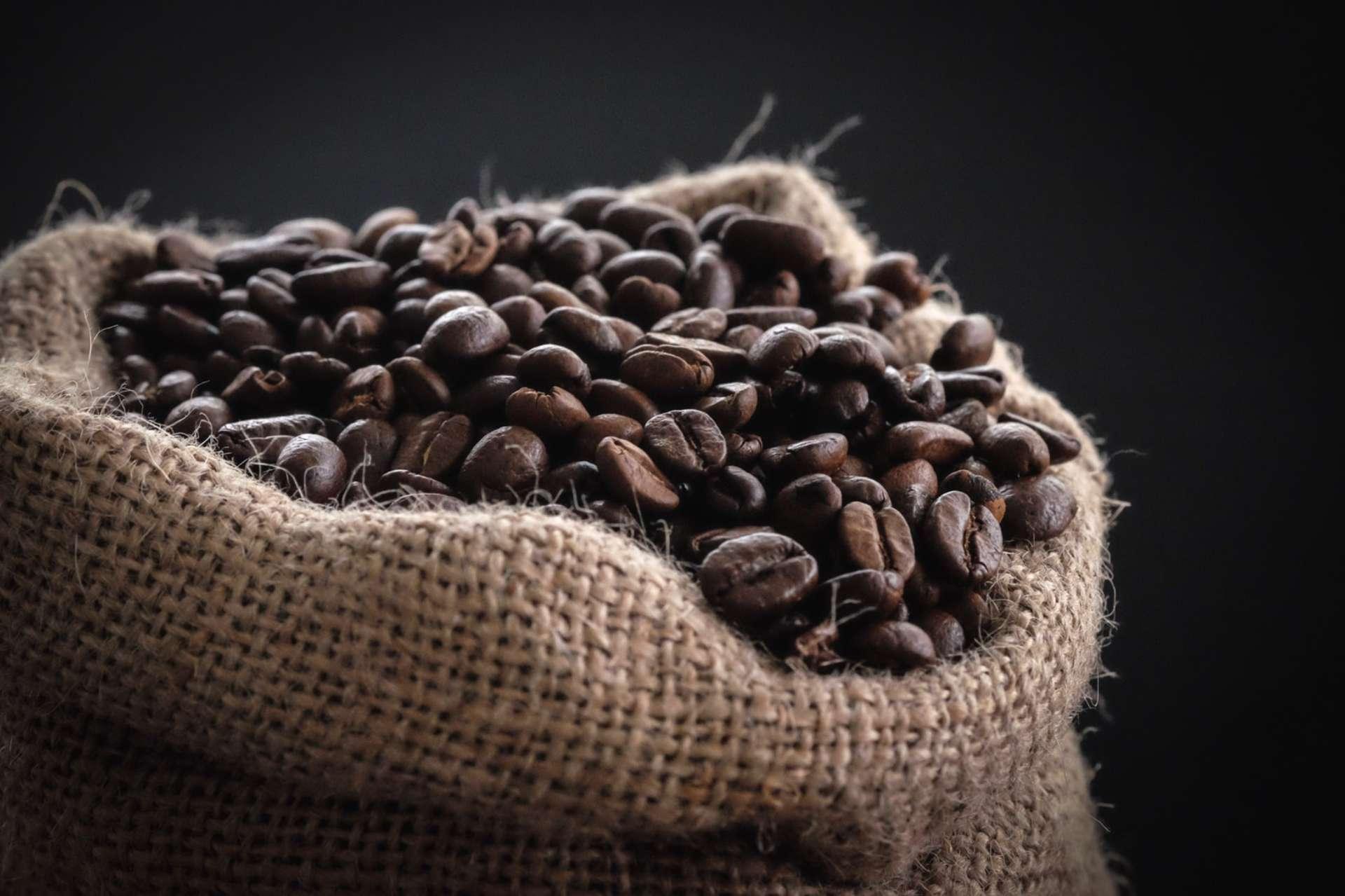 Elite Caffè Italiano 100%